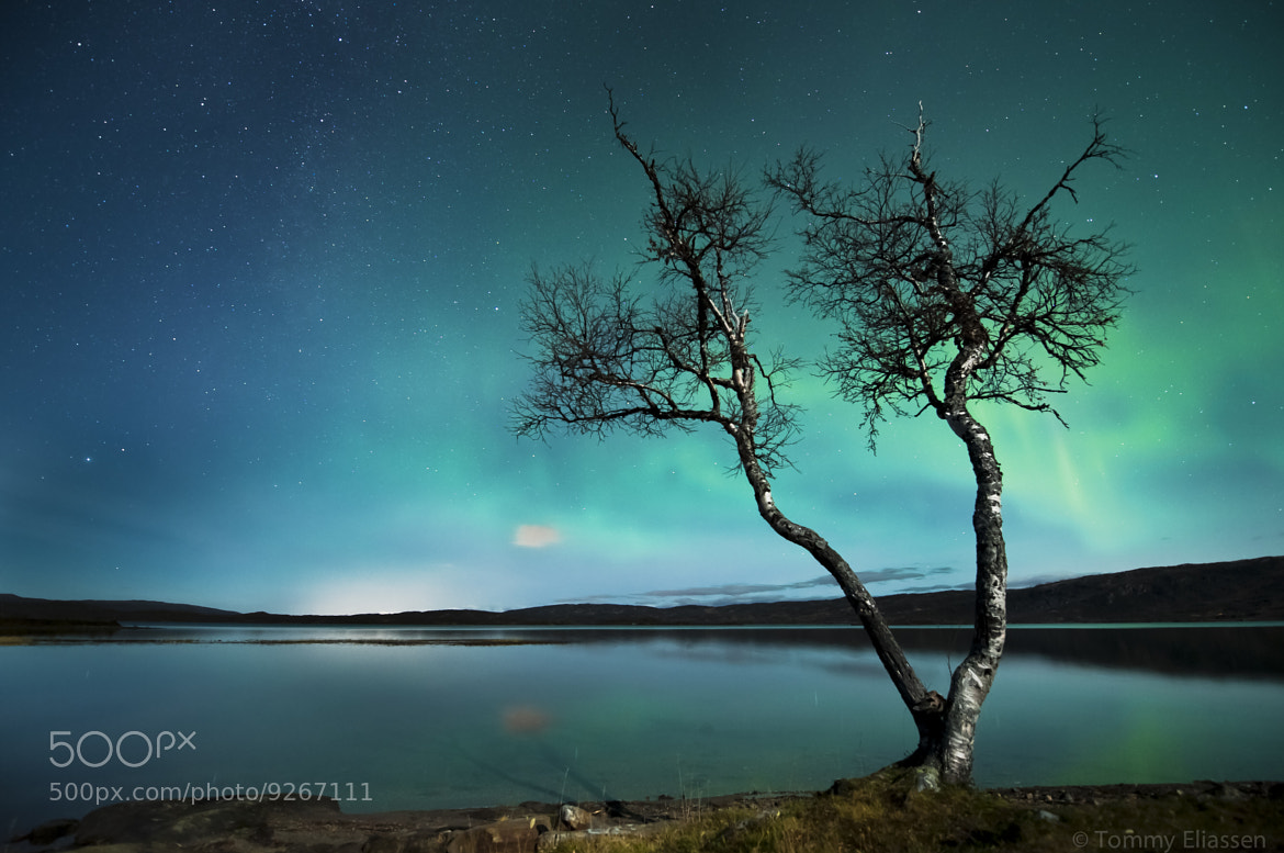 Photograph October night by Tommy Eliassen on 500px