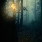 Постер, плакат: The Mirkwood The encounter with the necromancer