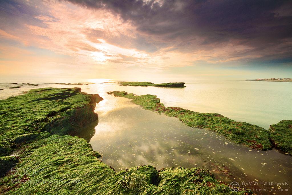 Photograph Ambleteuse Sunset by David Herreman on 500px