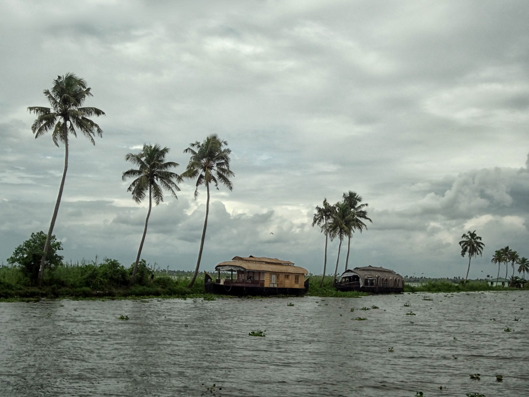 Photograph Kerala backwaters I by ojeeez z on 500px