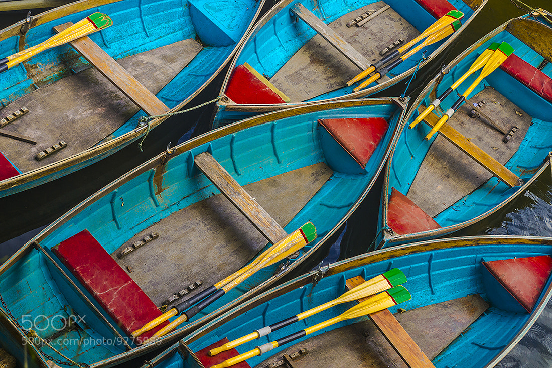 Photograph Primary Punts by Andy Butler on 500px