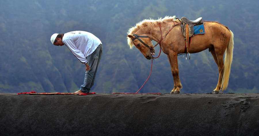 Obedience by Fahmi Bhs on 500px.com