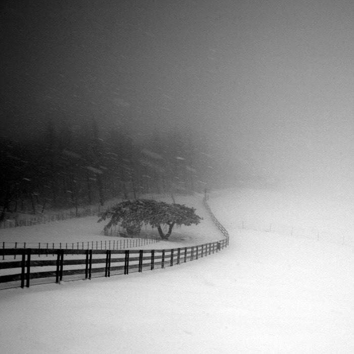 Photograph A Day in Snowy Lands #07 by Namdon Kim on 500px