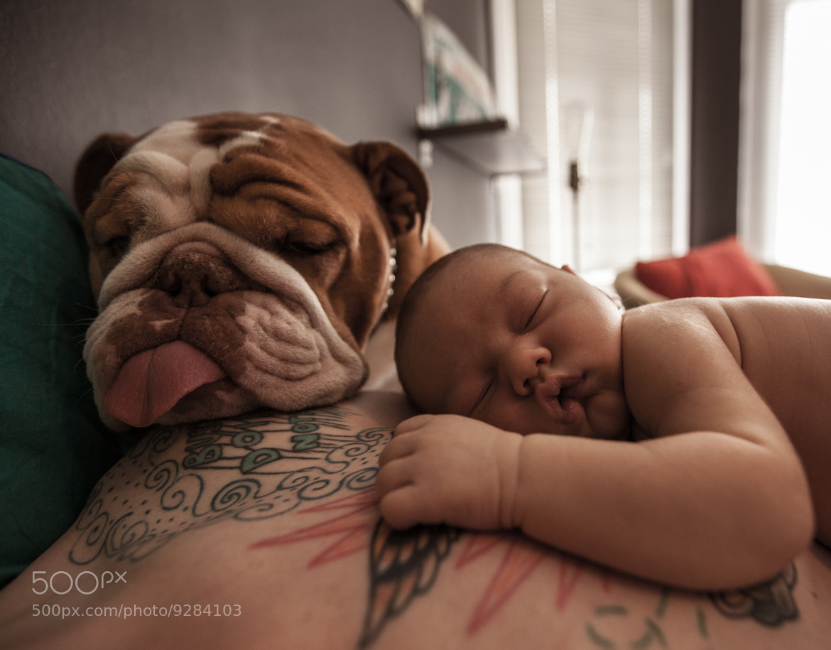 Photograph Life Is Tiring  by David Bouchat on 500px