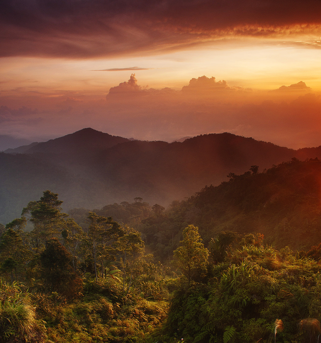 Photograph Dawn by Grey Chow  on 500px