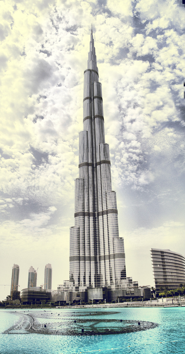 Photograph The Tallest One  by John Paul on 500px
