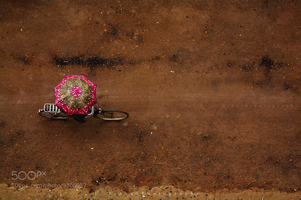 Photograph Rain and colors by Vidhu S on 500px