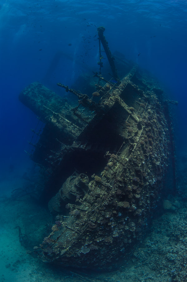 The Giannis D Wreck #2 in Red Sea