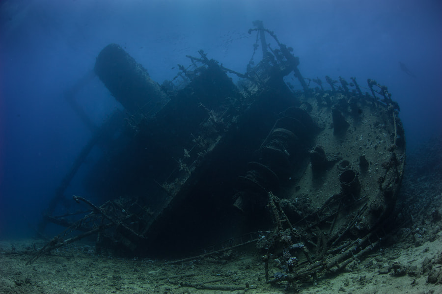 The Giannis D Wreck in Red Sea