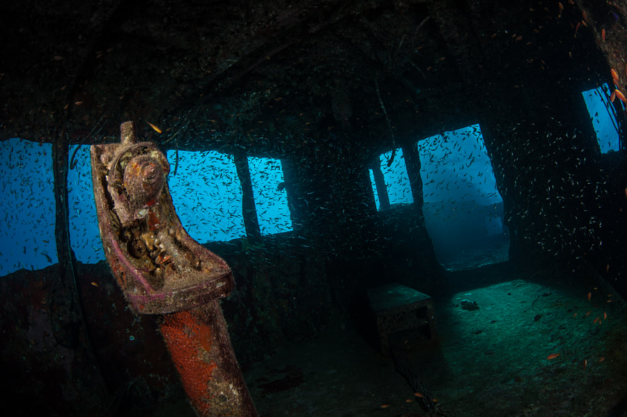 Interior of The Giannis D Wreck in Red Sea