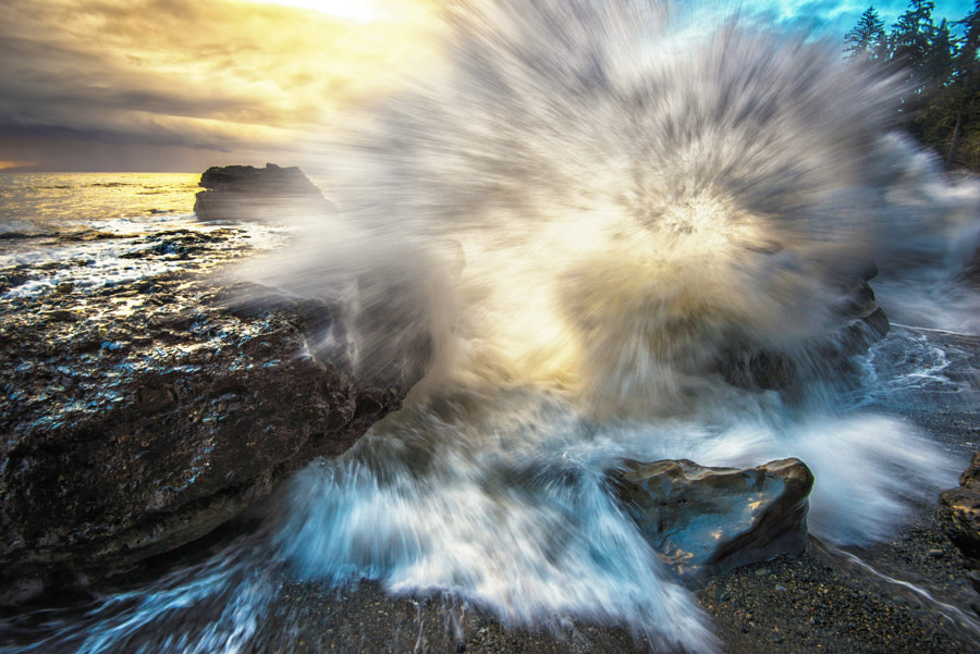 Naturally Exploded de James Xiang sur 500px.com
