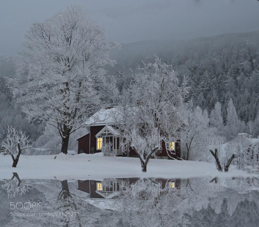 Reflection Of A Christmas Dream by Hilde S. Jonsmyr