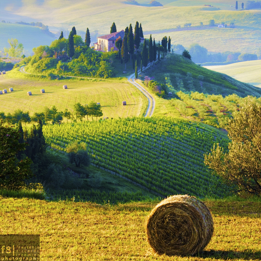 The perfect farmhouse by Francesco Riccardo Iacomino on 500px.com