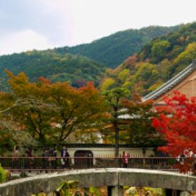 Fall at Arashiyama, Kyoto