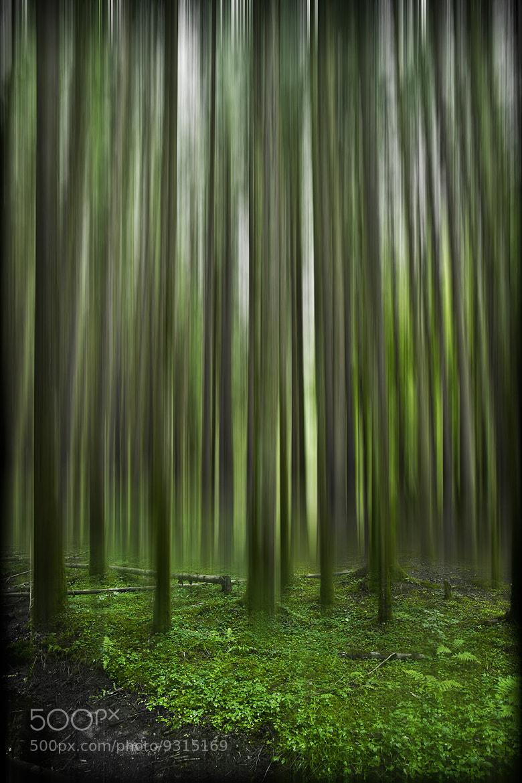 Photograph Vertigo. by Laurence Penne on 500px