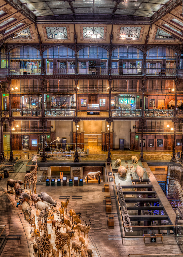Photograph The Natural History Museum of Paris by  W Brian Duncan on 500px