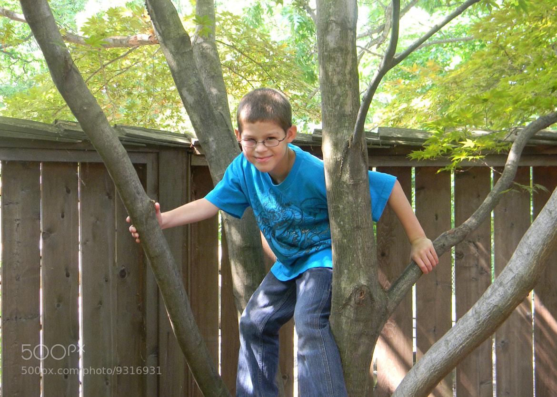 Photograph Boys love trees! by Debra Scribner on 500px