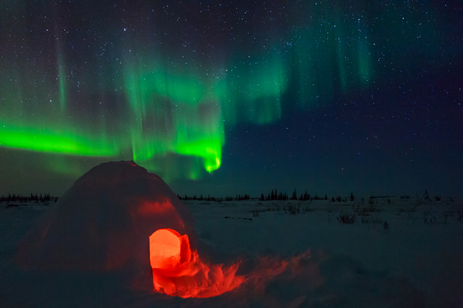 Igloo and Aurora Borealis by David Marx - best places to visit in Canada