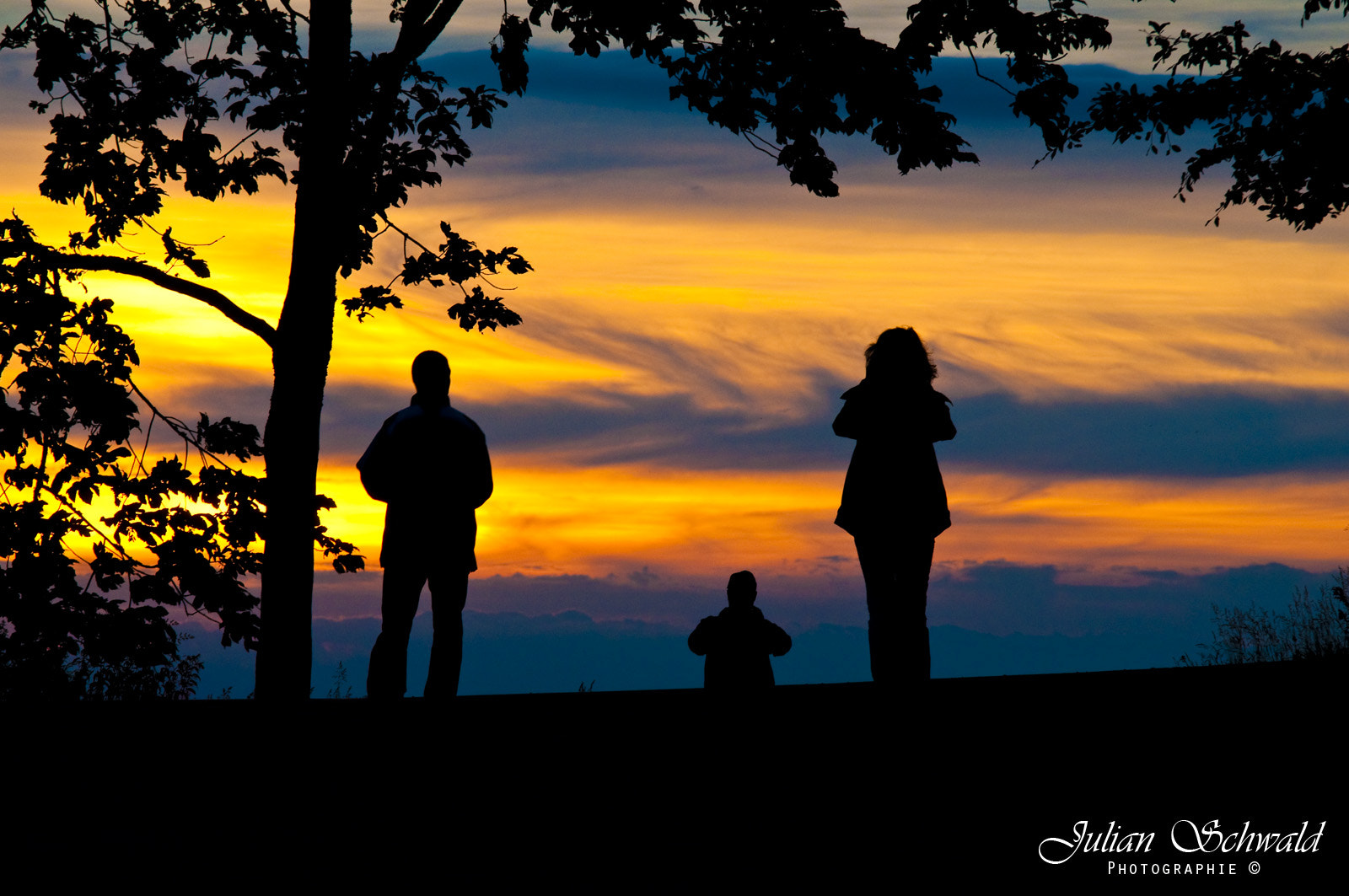 Photograph Sunset Silhouette by Julian Schwald on 500px