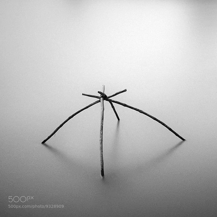 Photograph Submerge  by Hengki Koentjoro on 500px