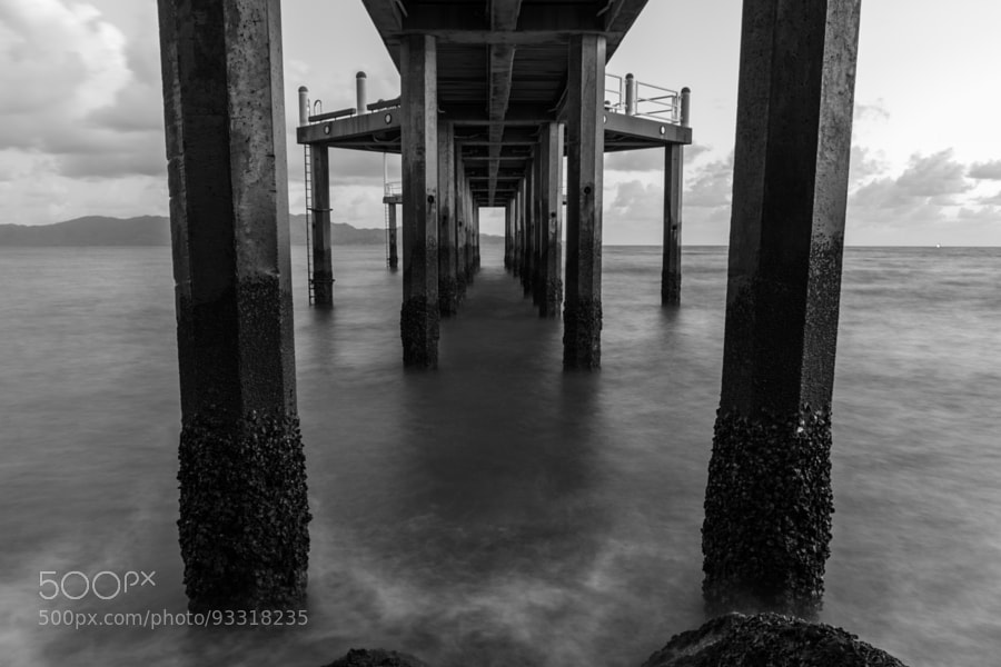 Photograph Strand Jetty Underbelly by David Cooling on 500px