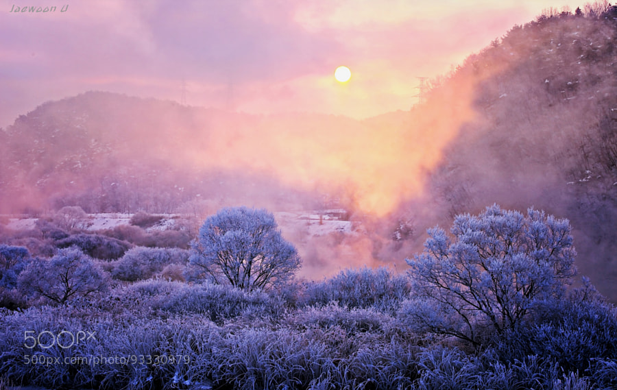 winter morning by Jaewoon U
