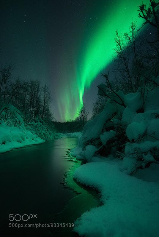 Christmas Lights by Arild Heitmann