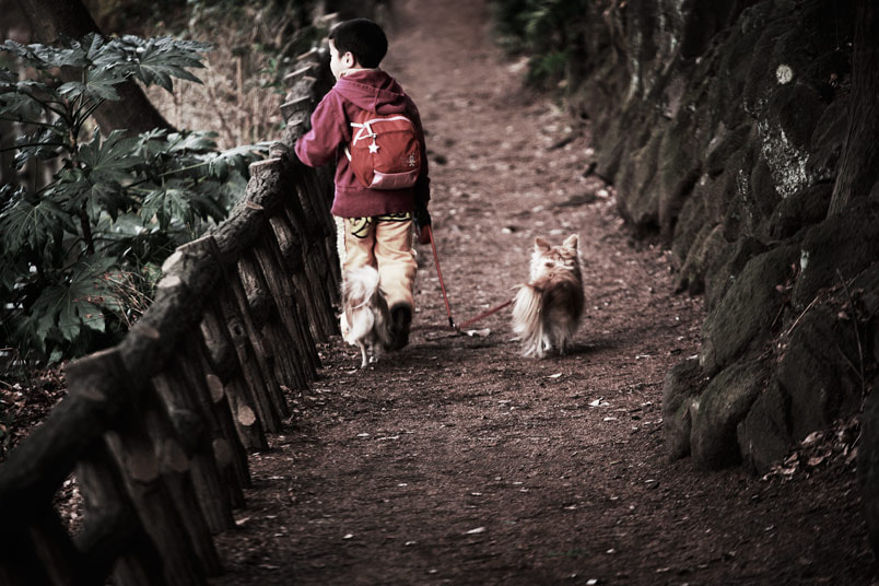Photograph japan, 2009 by Kevin  Yang on 500px