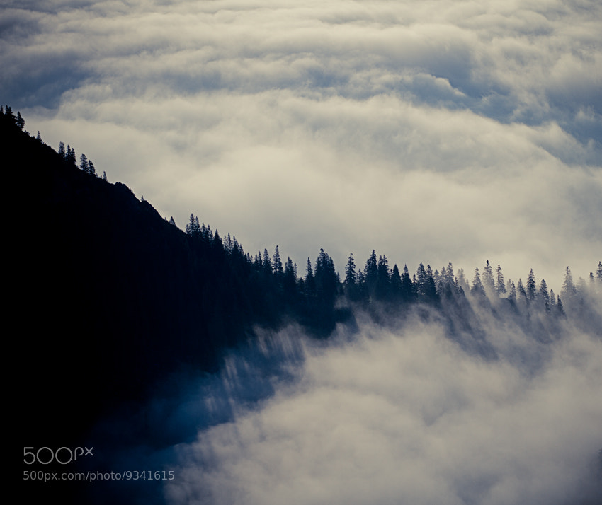 Photograph sunday morning fog by Tobias Balghuber on 500px
