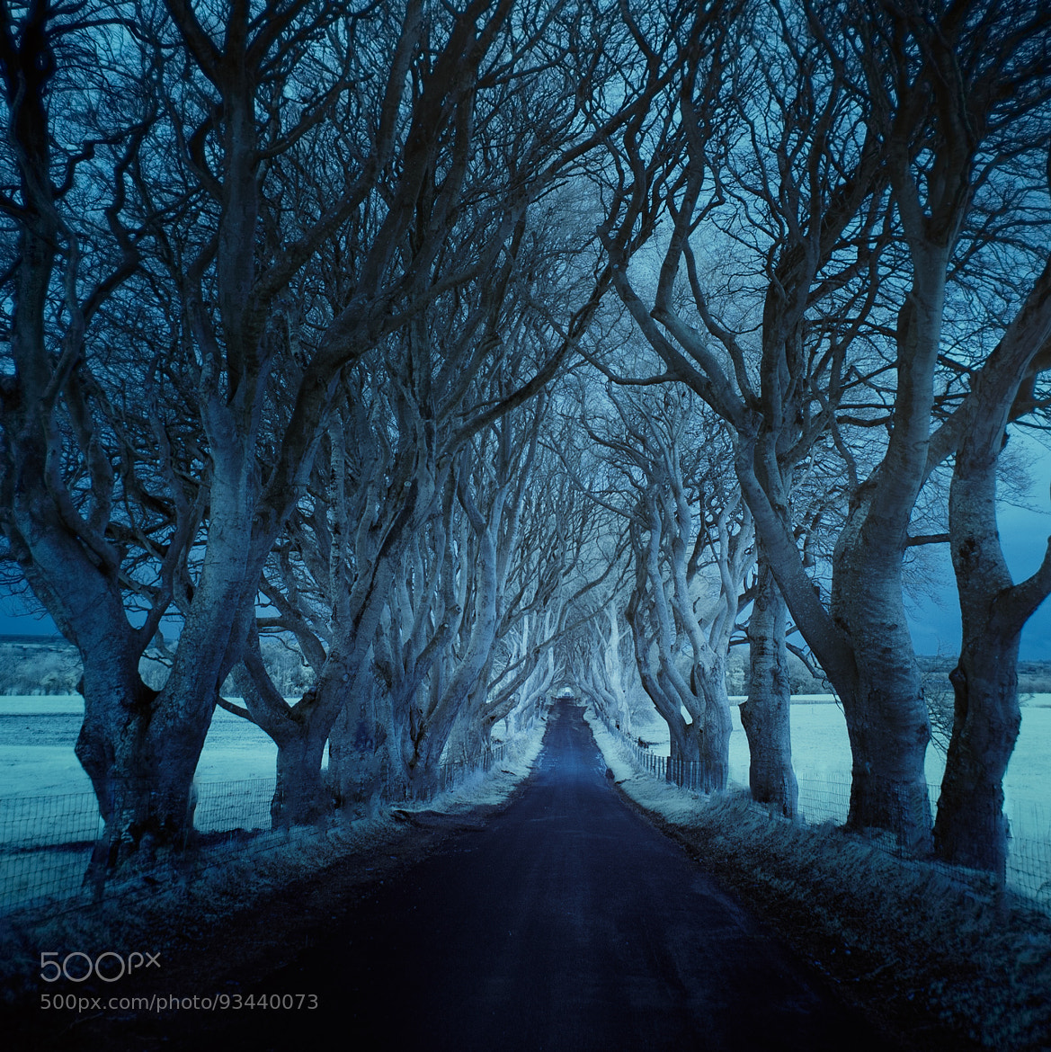 Page 1 | ѱ dark hedges IR by Andy Lee. Published by Trony on Wednesday, 24 December 2014 in Art and Design (Design's Factory)