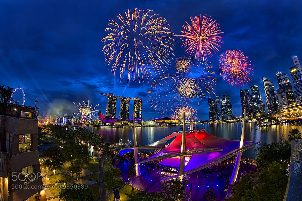 Photograph Magical Firworks by Partha Roy on 500px