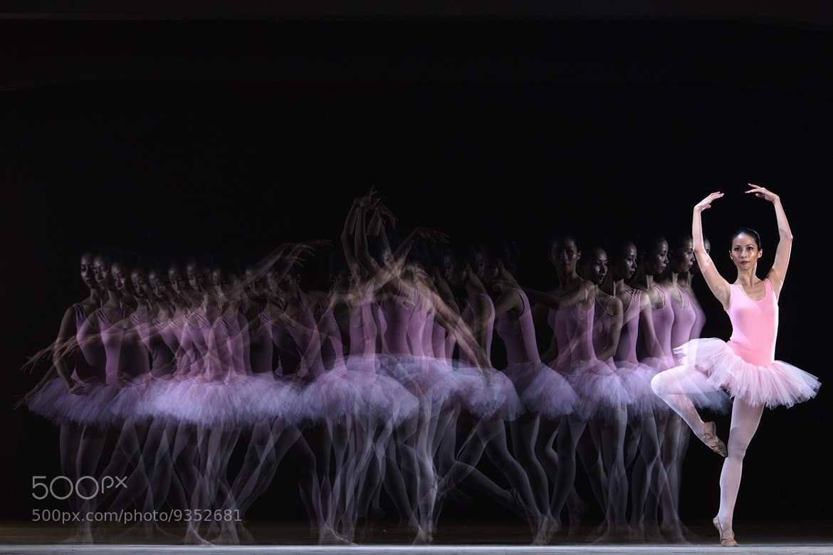 Photograph Ballerina #1 by SIJANTO NATURE on 500px