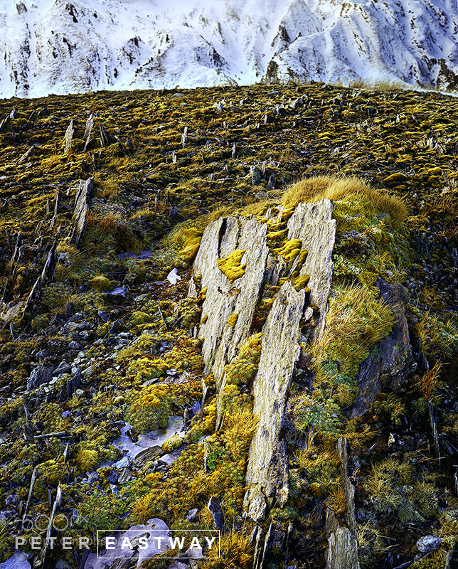 Photograph Rock Spikes, near Mount Adams, New Zealand by Peter Eastway on 500px