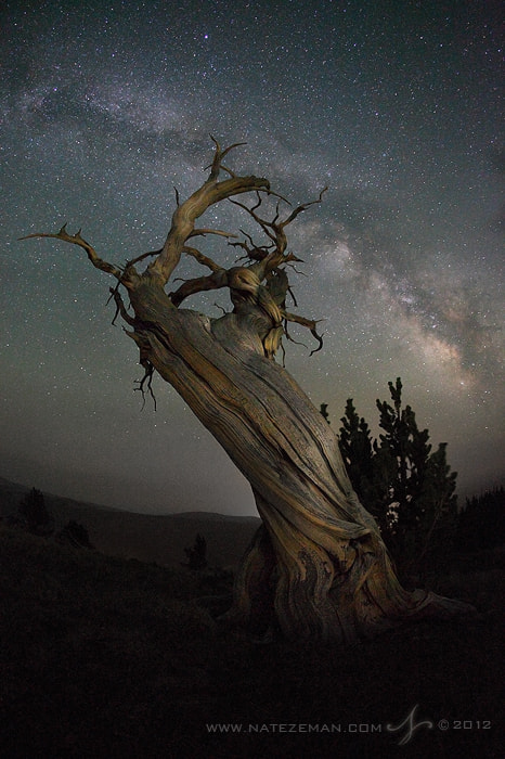 Photograph The Ancients by Nate Zeman | natezeman.com on 500px