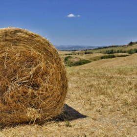 Hay Bale by The Traveller (TheTraveller)) on 500px.com