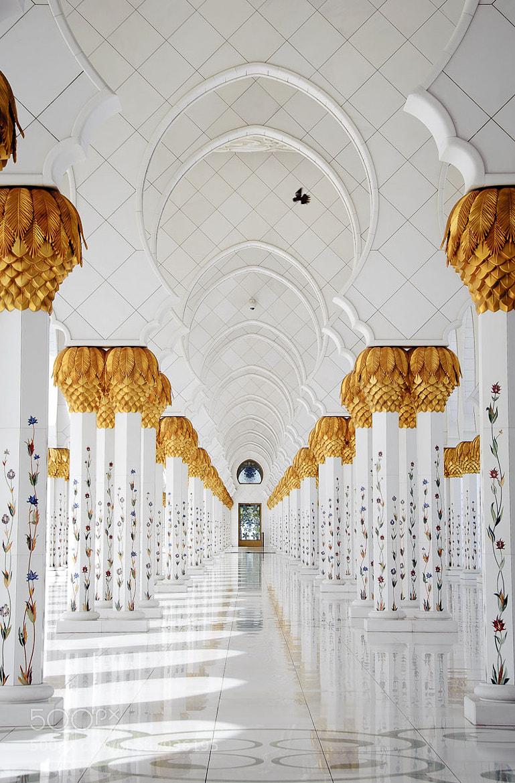 Photograph Abu Dhabi by Matt Kloskowski on 500px