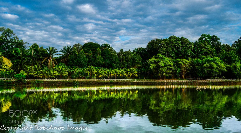 Photograph lake garden by ROBERT JR ANOC on 500px