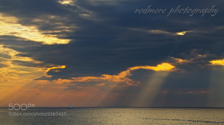 Photograph Shine Down by Redmere Photography on 500px