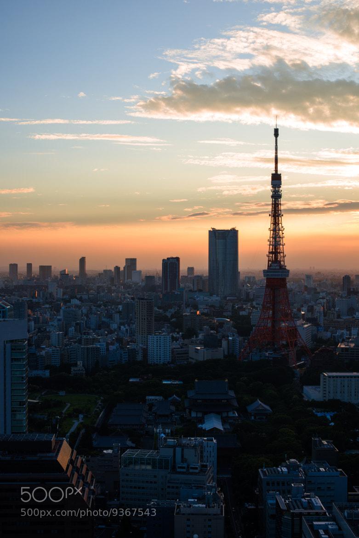 Photograph Sunset by Sekiguchi Kazusa on 500px
