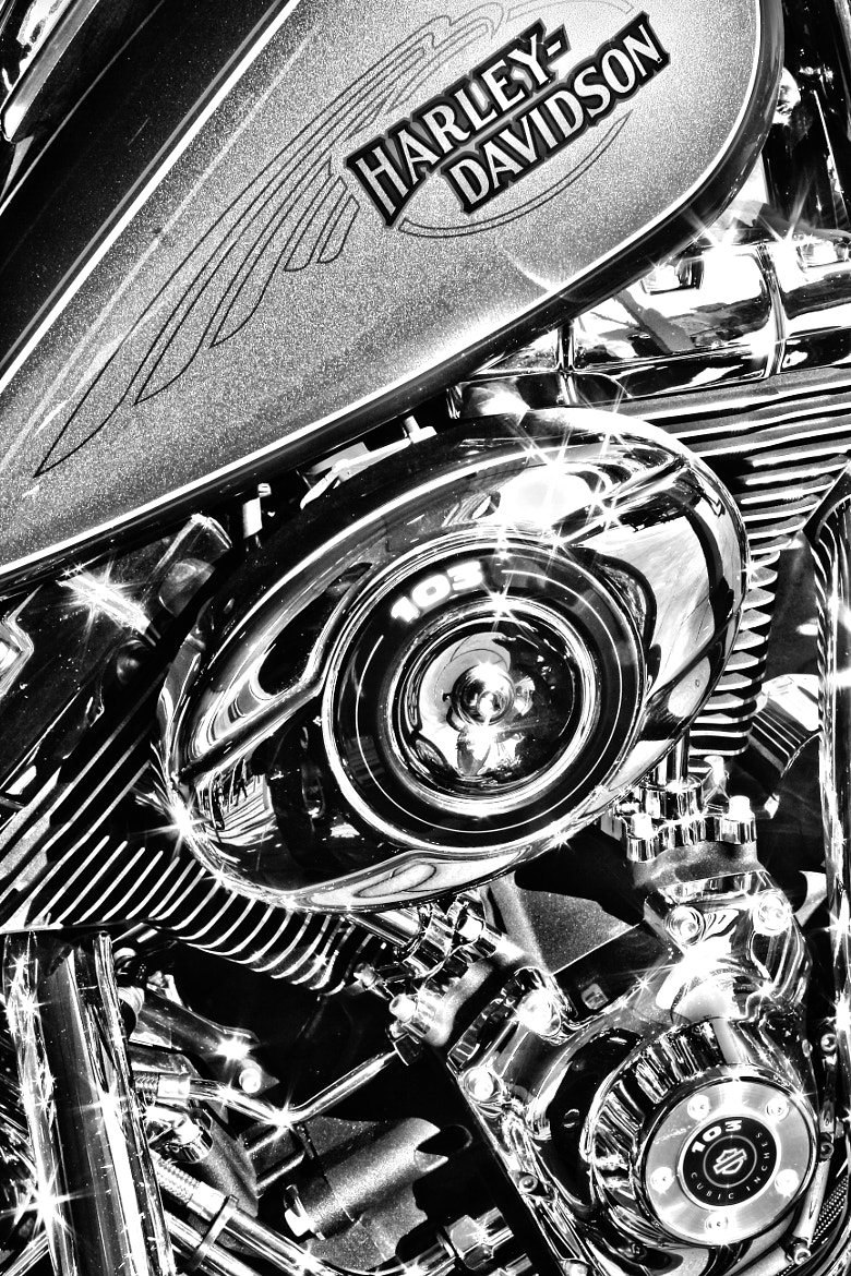 Photograph Harley Davidson by Mohammed Attar on 500px
