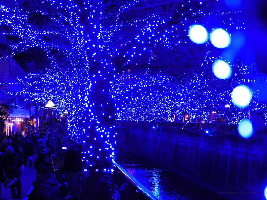 Nakameguro Blue Grotto Illumination 2014 中目黒 青の洞窟 by Yuji Kudo on 500px.com