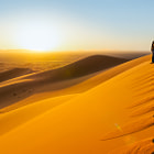 Постер, плакат: Traveler in the desert active young woman trekking in hot sandy wilderness dramatic sunset summer