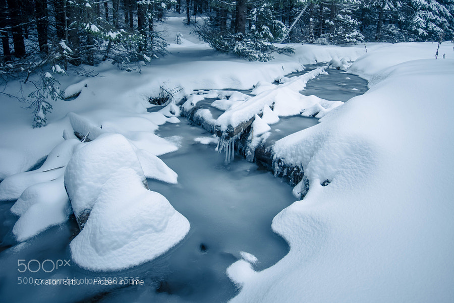 Photograph Frozen in Time by Cristian Sirbu on 500px