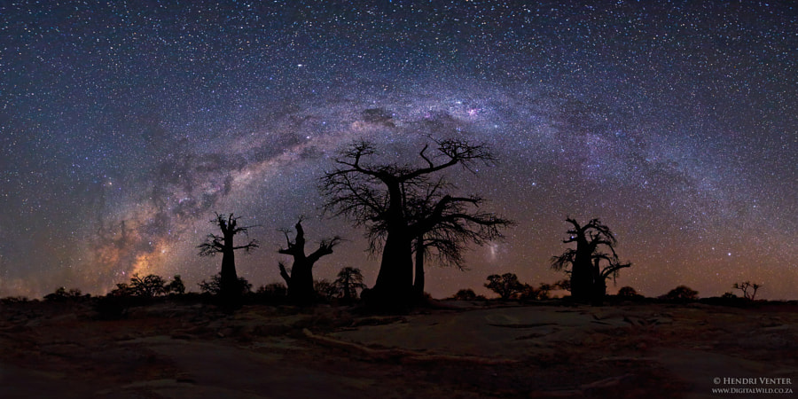 Photograph Starry Night by Hendri Venter on 500px
