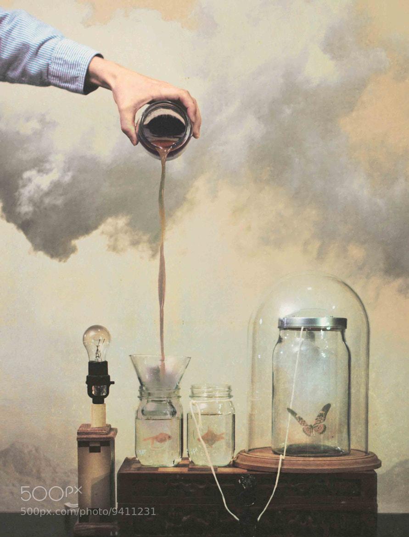 Photograph Alchemy by Nicholas Scarpinato on 500px