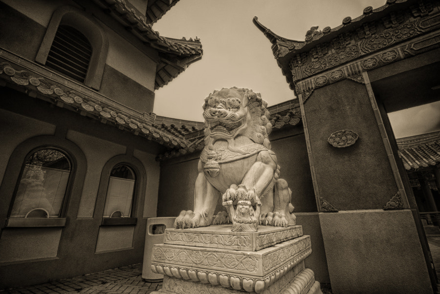 Photograph The Sentry by Jeremy Moore on 500px