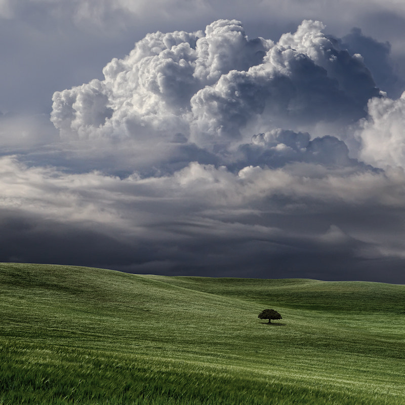Photograph Afternoon Storm by Carlos Gotay on 500px