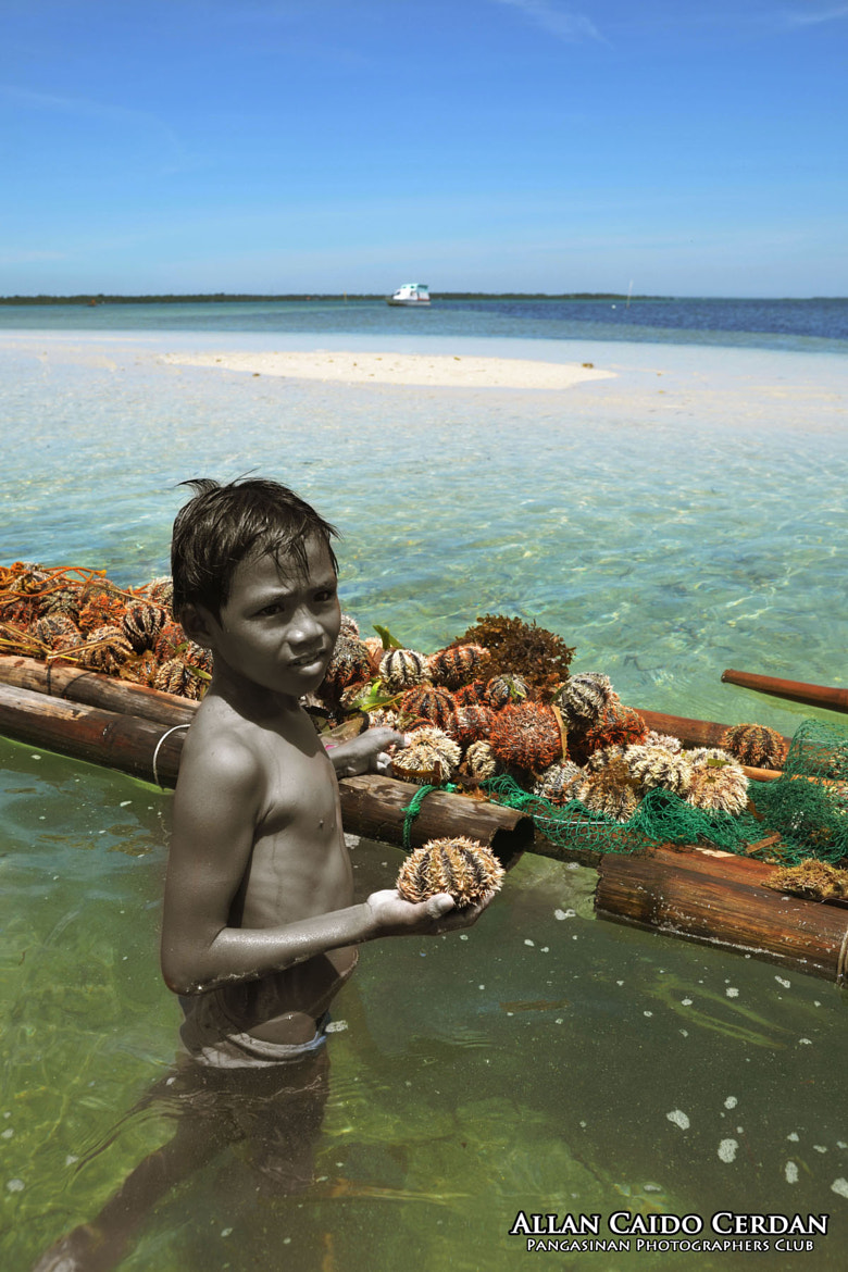 Photograph The Boy and the Sea Urchins by Allan Cerdan on 500px