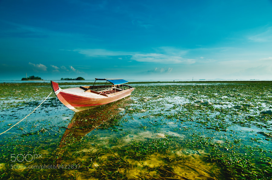 Photograph Trapped by Arief Wardhana on 500px