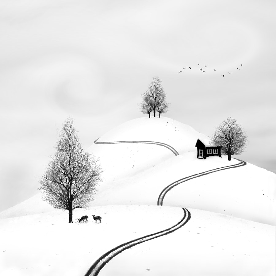 Happy New Year, автор — Sherry Akrami на 500px.com